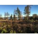 Trivselhus exploaterar tomtmark i Karlstad