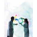 COMPASS, fas III-studie av Rivaroxaban, visar mycket god effekt på patienter med kranskärlssjukdom och perifer artärsjukdom och når målen i förtid
