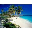 Nyhet! Transatlantisk cruise med stopp i 5 land