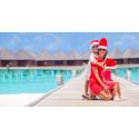 Vietnam, Florida och Dubai –  stora reseraketer för julfirande under palmerna