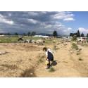 En flicka i lägret i Idomeni.