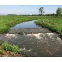 Våtmarkssatsning för ökade grundvattennivåer