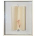 Lenke Rothman, Det dagliga könet, 1977