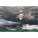 Fanatic Windsurfing FreeWave TeXtreme® 2014 board