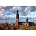 Processus expanderar med nytt kontor i Uppsala
