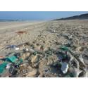 Nytt projekt sätter fokus på Östersjöns mikroplaster