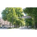 Norrköping satsar på parkeringsledning