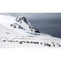Skolans polardagar för sjunde året