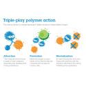 Läpimurto makromolekyylitutkimuksessa auttaa nujertamaan virustartuntoja