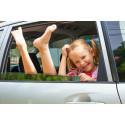 Hver fjerde dansker tager på bilferie i 2015