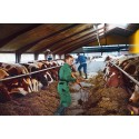 Arla launches 2014 CSR report