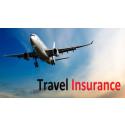 Global Travel Insurance Market Size, Status and Forecast 2022