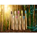 Humble Brush – tandborstar i bambu med BPA-fria borststrån