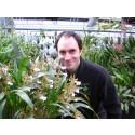 Prestigefull utnämning till Botaniskas intendent