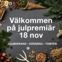 Brunnsbo Musikklasser och jultomten inviger Jul i Nordstan