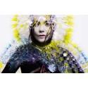 Björk hyllas med konsert, film och danceoke