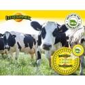 """LEERDAMMER® reagiert mit Theken-Laiben aus Milch der """"Initiative für Weidehaltung"""" noch stärker auf wachsende Konsumenten-Ansprüche"""