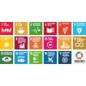 Funktionshinderperspektivet i Agenda 2030