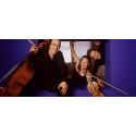 Kungsbacka Piano Trio ger konserter i Skåne