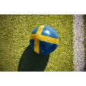 Sverige till fotbolls-VM – reserusch till Ryssland väntas