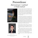 """Pressrelease: """"Bärnstenar i vattnet"""" av Michèle Glatthard. 28 sep. på Bokmässan i Göteborg."""