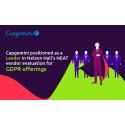 Capgemini har blitt anerkjent som leder innen GDPR Services