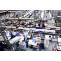 Færre slagtegrise koster 175 jobs i Horsens