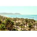 Spies flyver direkte til Almería-kysten