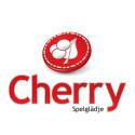 Förstärkning i  koncernledningen  för Cherry AB (publ)
