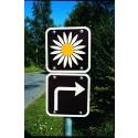 Ny app till Danmarks vackraste vägar