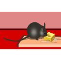 Bliver mus tiltrukket af ost?