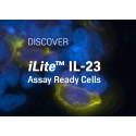 Discover new iLite™ IL-23 Assay Ready Cells
