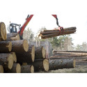 Enklare söka tillstånd för virke och skogsbränsle vid väg