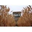 OECD-FAO spår långsammare tillväxt för jordbruksproduktionen i världen