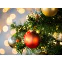 Julegaven 2016 – slik gikk det!