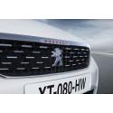 Stor digital satsning - leasa din Peugeot eller DS online