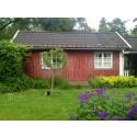 Rekordökning för Airbnb - 125 000 svenskar reste med Airbnb i somras
