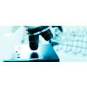 Tafinlar + Mekinist er godkjent som den første målrettede kombinasjonsbehandlingen mot aggressiv føflekkreft