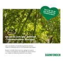 När du köper Moringaträd får du ett vackert gåvokort att ge bort