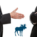 Blue Moose Reveal How to become a Body Language Expert Overnight