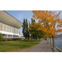 På lördag växer regnbågsstaden Härnösand  - invigning av regnbågslinor på simhallen