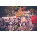 Höstmarknad på Zetas Trädgård 1-2 oktober