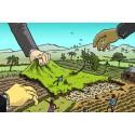 ActionAid manar till stopp av EcoEnergy´s land grabbing i Tanzania