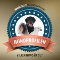 Vilken hund är du? Hundstallet lanserar Facebooktest som avslöjar DIN hundpersonlighet.