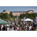Kulturernas Karneval omöjlig utan volontärerna