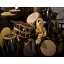 Ljudfest för hela familjen när Kroumata gästar Österåker