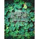 Ny bok med 50 naturmeditationer