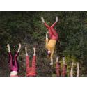 Prisat nycirkuskompani bjuder på djurisk akrobatik