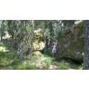 Res klimatsmart tillsammans, men vandra själv i Sveriges nationalparker