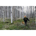 Pausgympa i skogen